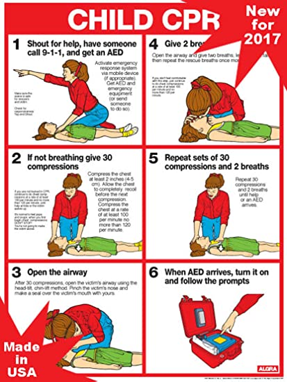 Amazoncom Cpr For Children 18 X 24 Laminated Poster 2011