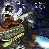 In the Midst of the Storm [Vinyl LP]