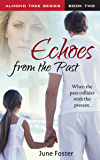 Echoes From the Past (The Almond Tree Series Book 2)