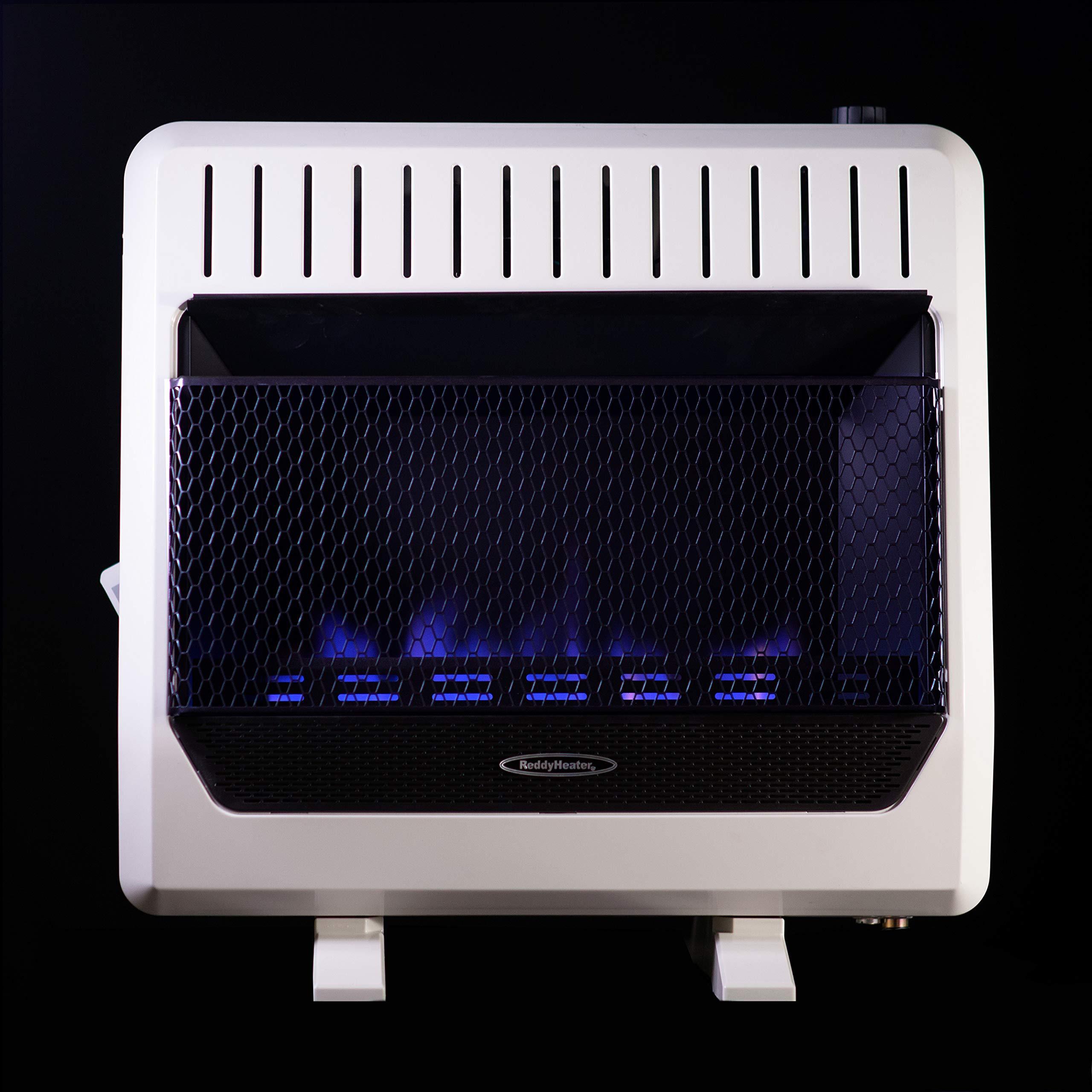 Sure Heat BWH30NLTE Dual Fuel Flame Wall or Floor Mount Heater, 30K BTU, Beige/Tan/Blue by Sure Heat