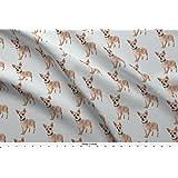 Amazon com: Cotton Chihuahua Dogs Animal Cotton Fabric Print