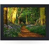 Woodland Path. High Quality Beanbag Laptray. L0140(Black)