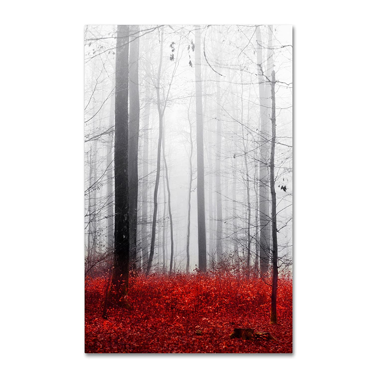 Trademark Fine ArtLittle Red Carpet Artwork by Philippe Sainte-Laudy, 12 by 19-Inch PSL0273-C1219GG