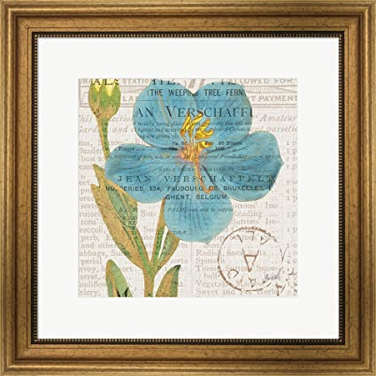 Bookshelf Botanical VI By Katie Pertiet Framed Art Print Wall Picture Wide Gold Frame