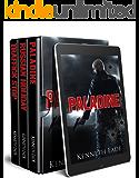 Paladine Political Thriller Series Box Set One