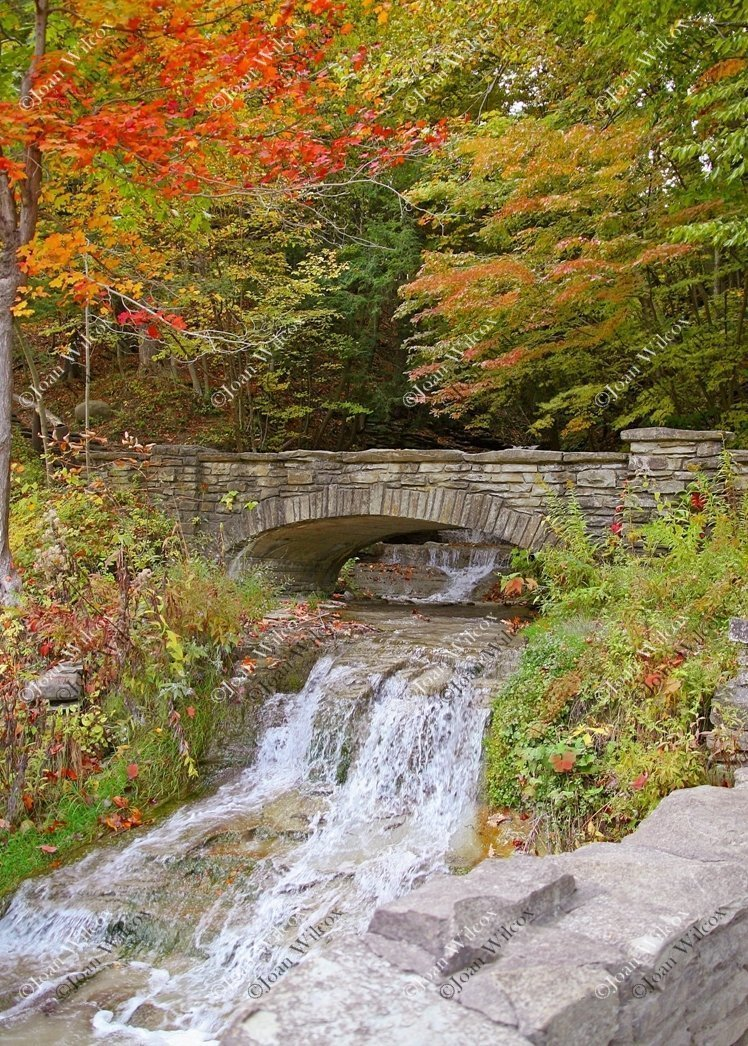 NY Original Fine Art Photography Wall Art Photo Print Autumn Waterfall Stone Walk Foot Bridge Path Letchworth State Park