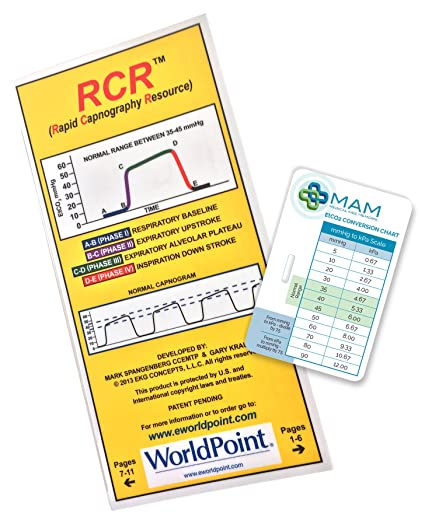 RCR Booklet with FREE EtCO2 Conversion Chart: Amazon co uk: Sports