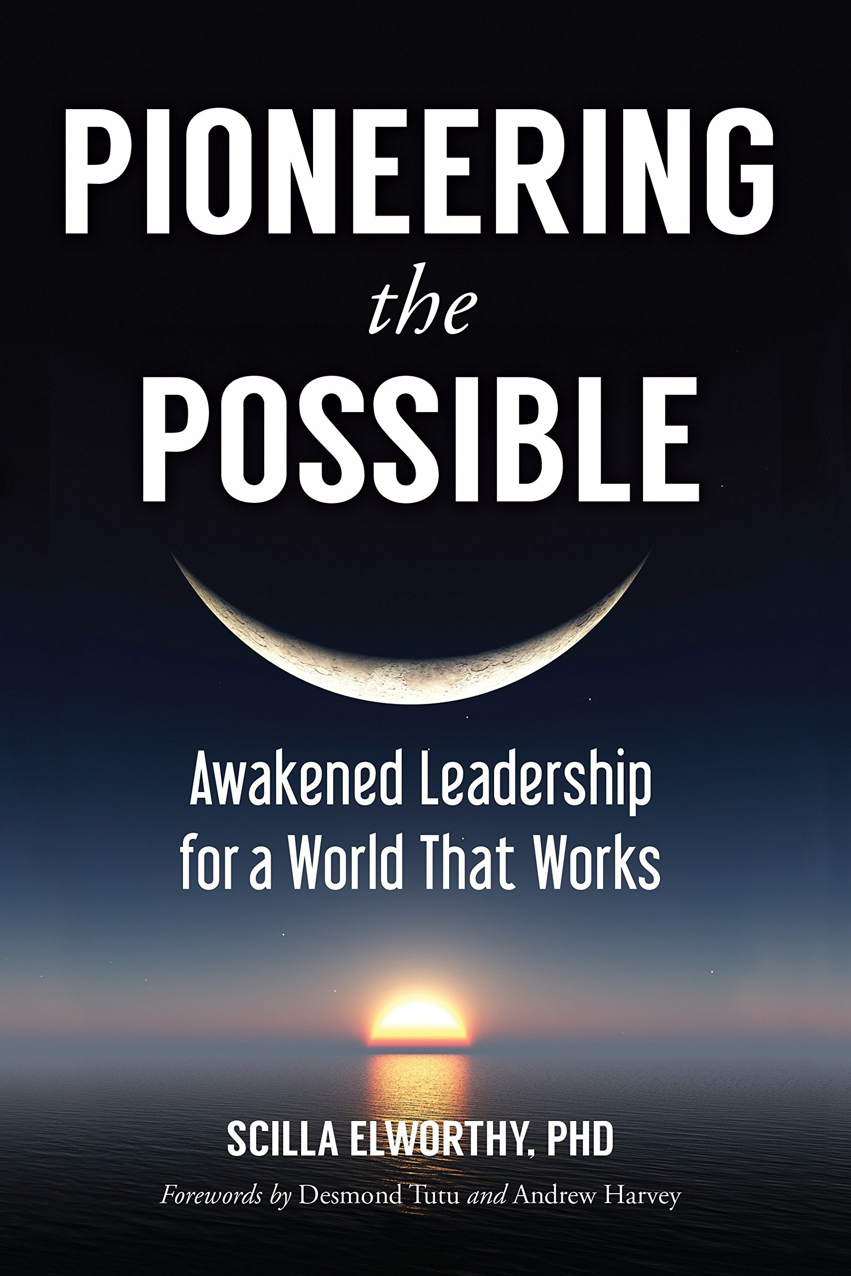 Pioneering the Possible: Awakened Leadership for a World That Works (Sacred Activism) PDF