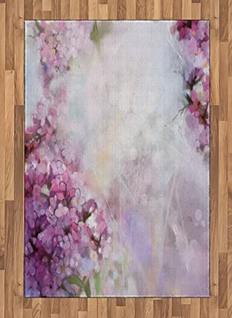 Lunarable Flower Area Rug, Roman Hyacinth Petals and The Apricot Blooms in  Grunge Colors Work of Art Print, Flat Woven Accent Rug for Living Room  Bedroom ... 84a41d1e77