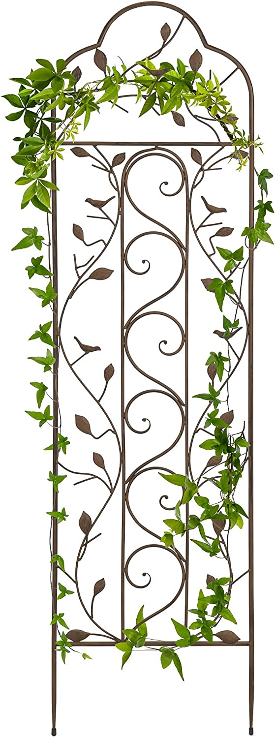 Best Choice Products 60×15-inch Iron Arched Garden Trellis w Branches, Birds for Lawn, Garden, Backyard, Climbing Plants, Bronze