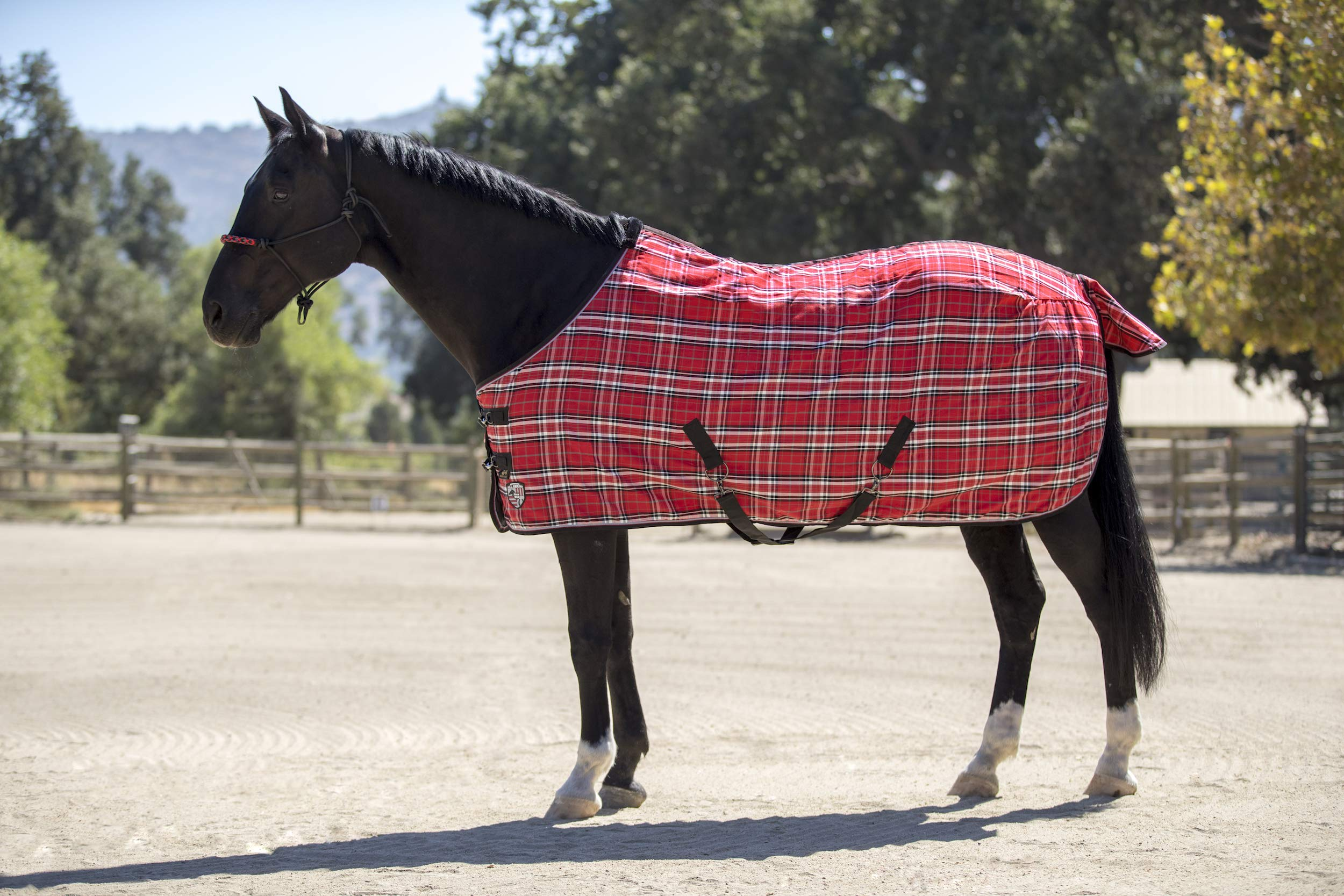 Kensington Products Poly Cotton Horse Blanket - Lightweight Breathable Equine Stable Day Sheet (75, 161- Deluxe Red) by Kensington Protective Products