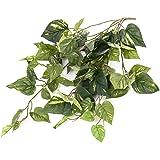 Mata de pothos artificial, 70 hojas verdes, 60 cm - planta artificial / colgante - artplants