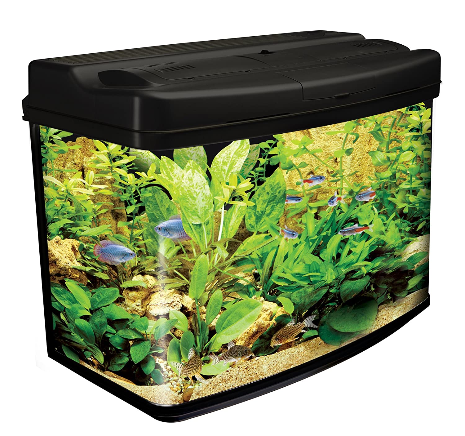 Interpet Fish Pod Glass Aquarium Fish Tank 64 L Amazon Pet