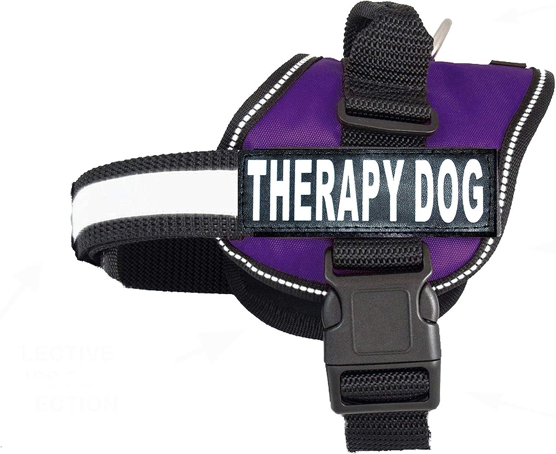 purple service dog vest amazon