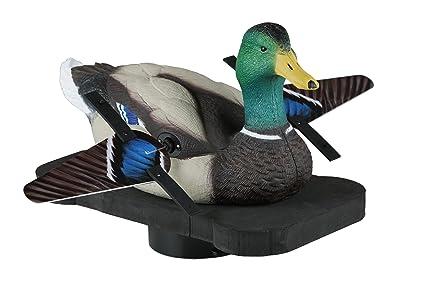 Amazon.com : Lucky Duck Lucky Splasher : Sports & Outdoors on