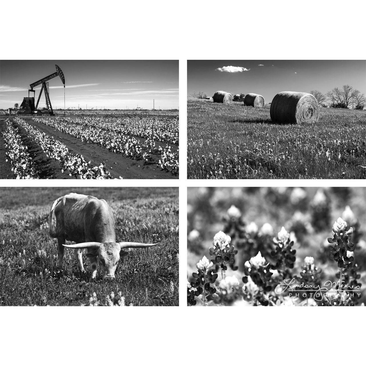 11x14 inch Texas Prints - Set of Four Photos - ''Black and White Texas'' by TravLin Photography