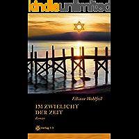 Im Zwielicht der Zeit (Band 1) (Ellinor Wohlfeils Familien-Saga)