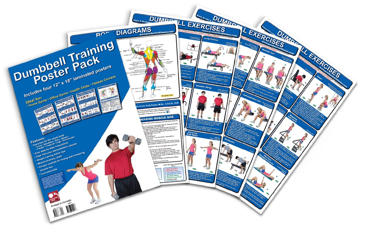Dumbbell Training Poster Pack Exercises product image