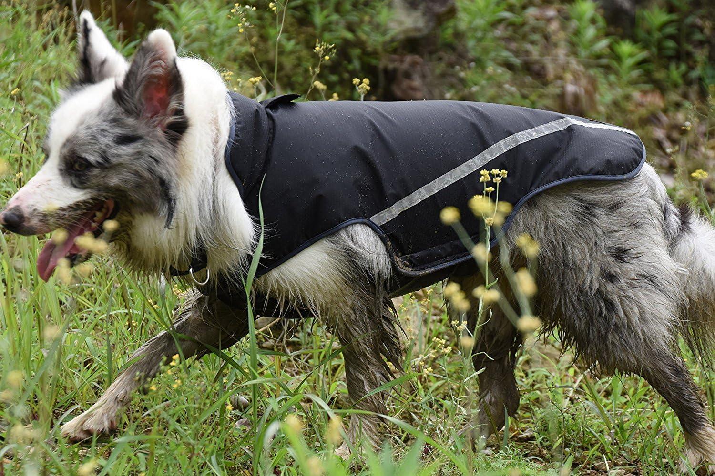 schwarz mittelgro/ße und gro/ße Hunde Wasserdichter Hunderegenmantel weiche Sicherheitsweste mit Klettverschluss f/ür kleine