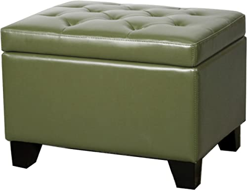 New Pacific Direct Julian Rectangular Bonded Leather Storage Ottoman,Asparagus Green