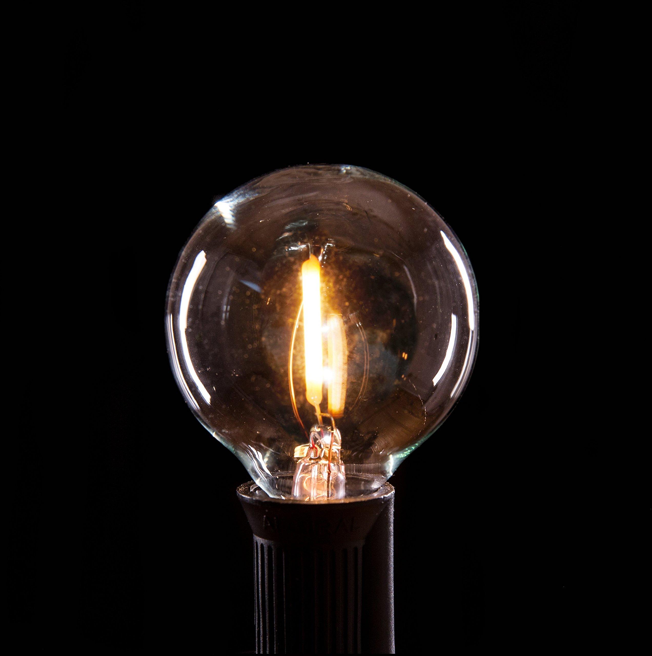 Hometown Evolution, Inc. Box of 25 G40 LED Filament Clear 1.6 Inch .6 Watt C7 Base Replacement Bulbs