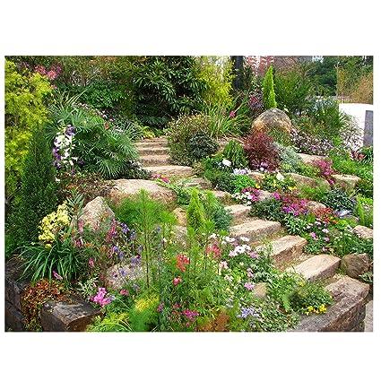 Amazon.com : Garden Background - TOOGOO(R) Thin Vinyl Studio Garden ...