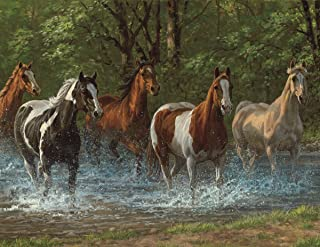 product image for Springbok's 36 Piece Jigsaw Puzzle Summer Creek