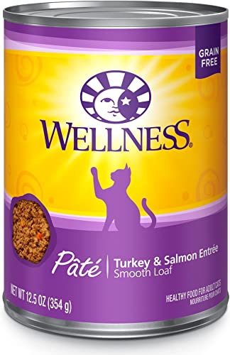 Wellness Complete Health Natural Grain Free Wet Canned Cat Food Pate Recipe Turkey Salmon Pate
