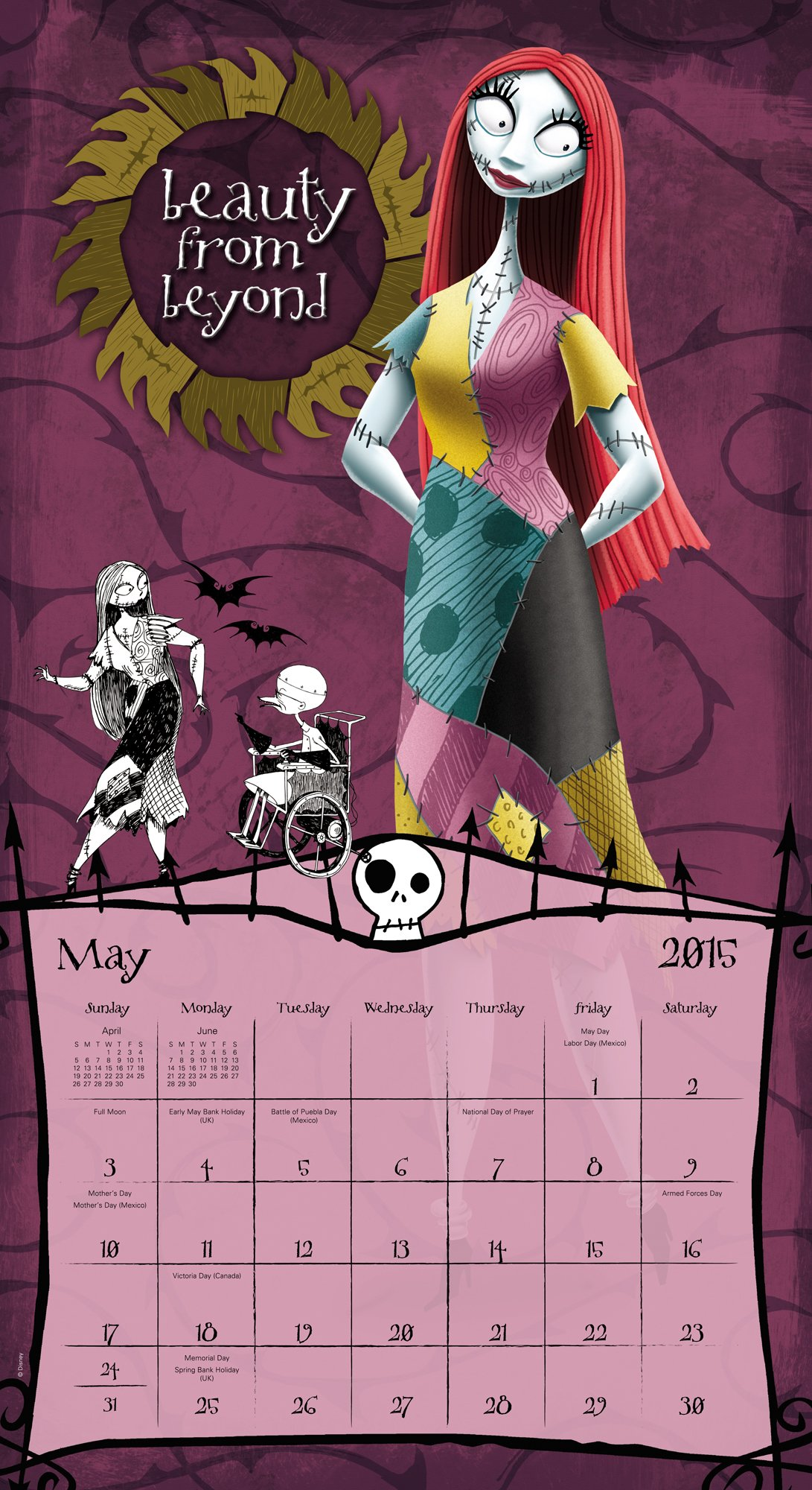 Disney the Nightmare Before Christmas Wall Calendar (2015): Day ...