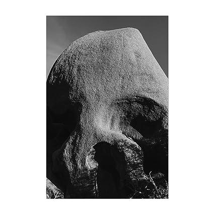 Amazon Com Noir Gallery Skull Rock Joshua Tree Mountains 8