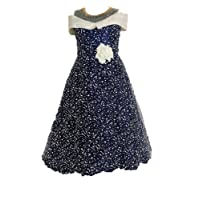 My Lil Princess Girl's Net Frock Dress