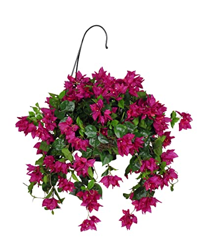 Amazon house of silk flowers artificial bougainvillea hanging house of silk flowers artificial bougainvillea hanging basket violetfuchsia mightylinksfo