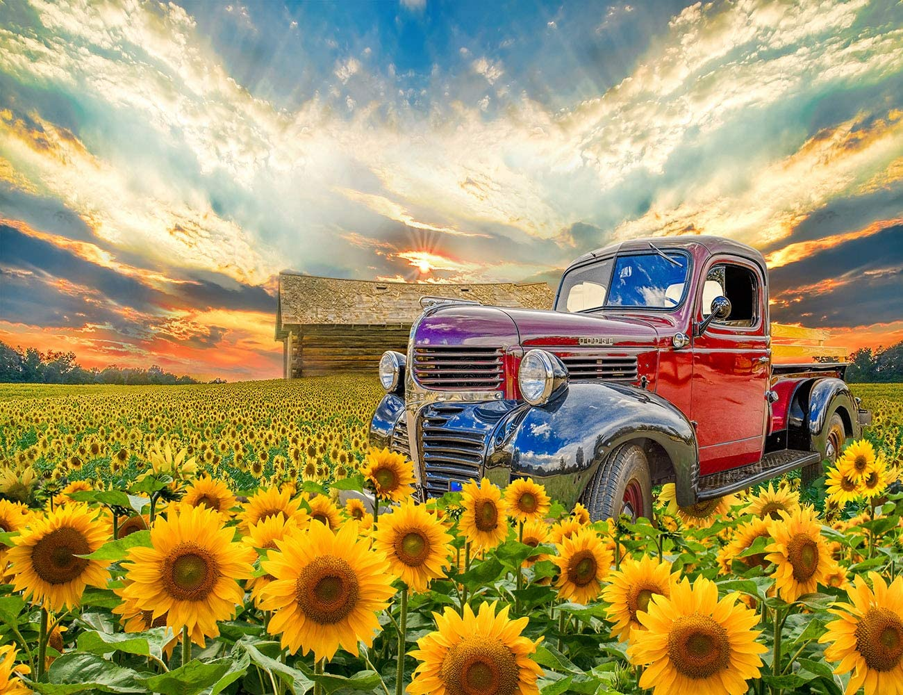 LB 10x8ft Sunflower Backdrop for Photograph Fall Rural Theme Background for Party Decorations Fall Sunflower and Truck Decorations for Video Sunflower Birthday Party Decorations Photo Booth