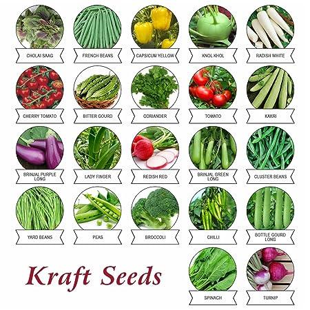 Kraft Seeds 22 Varieties of Vegetable Seeds Indian Vegetable Exotic Vegetable Heirloom Varieties Grow Your Own Vegetable Garden High Yield Varieties