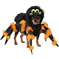 CALIFORNIA COSTUME COLLECTIONS Spider Pup Dog Costumes, Pet, Black/Orange, Small, Model Number: PET20149