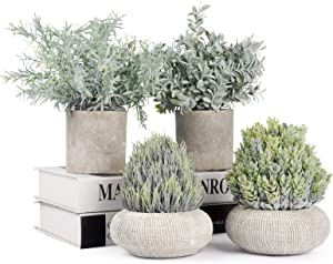 JC nateva Set of 4 Small Artificial Plants Mini Potted Fake Plants Indoor for Home Office Farmhouse Kitchen Bathroom Table Decor