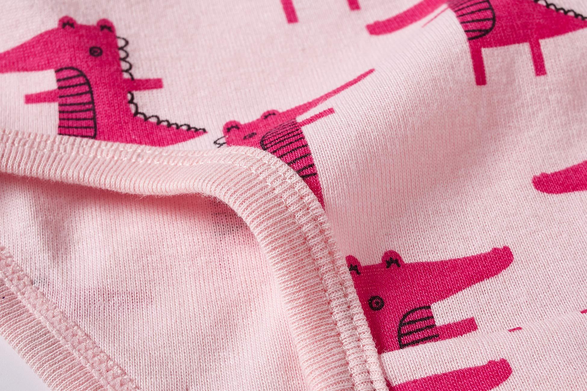 Baby Soft Cotton Panties Little Girls'Briefs Toddler Underwear (Pack of 6)