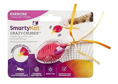 SmartyKat, Crazy Cruiser