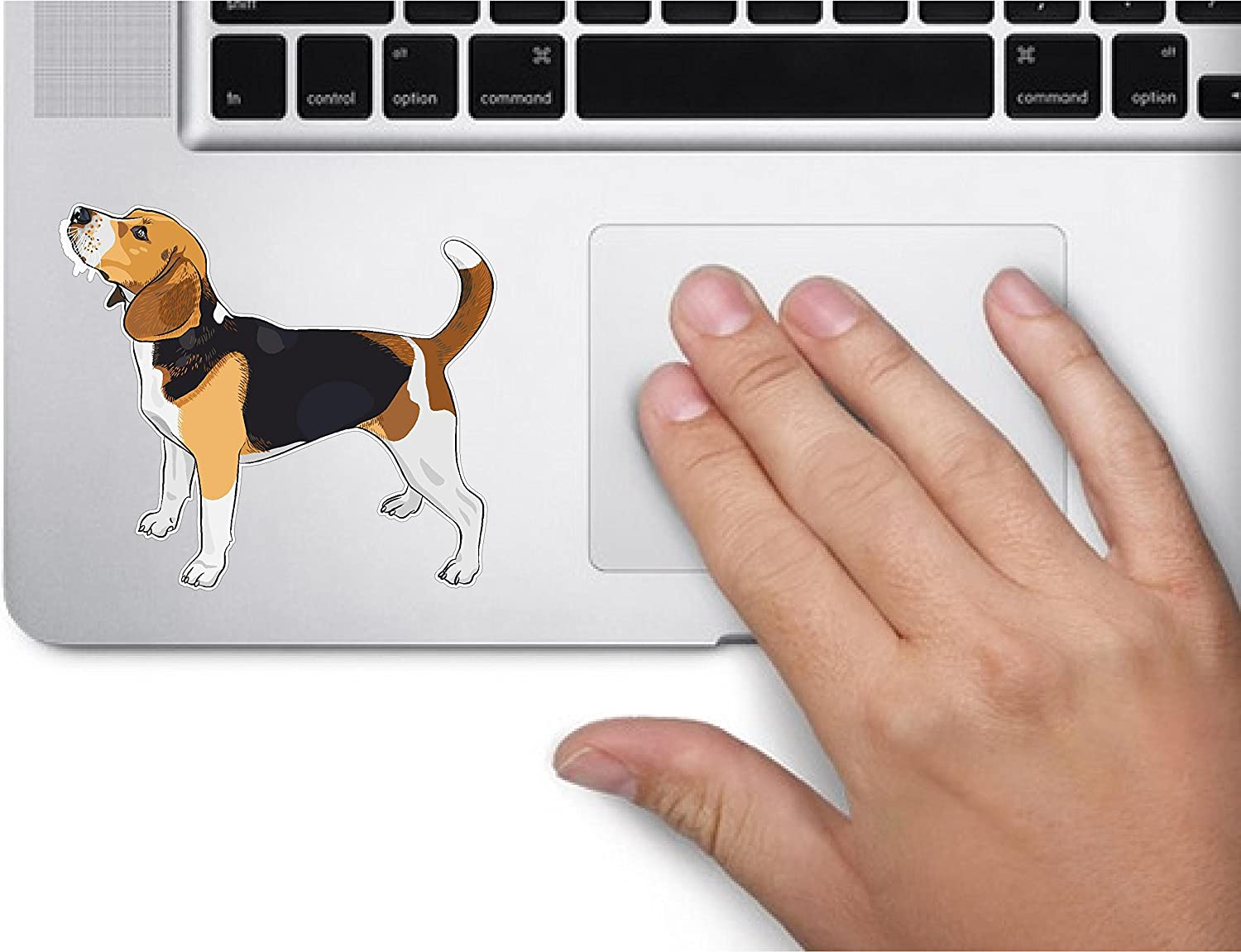 Dog #2 Beagle 3x3.5 inches Sticker Decal die Cut Vinyl - Made and Shipped in USA