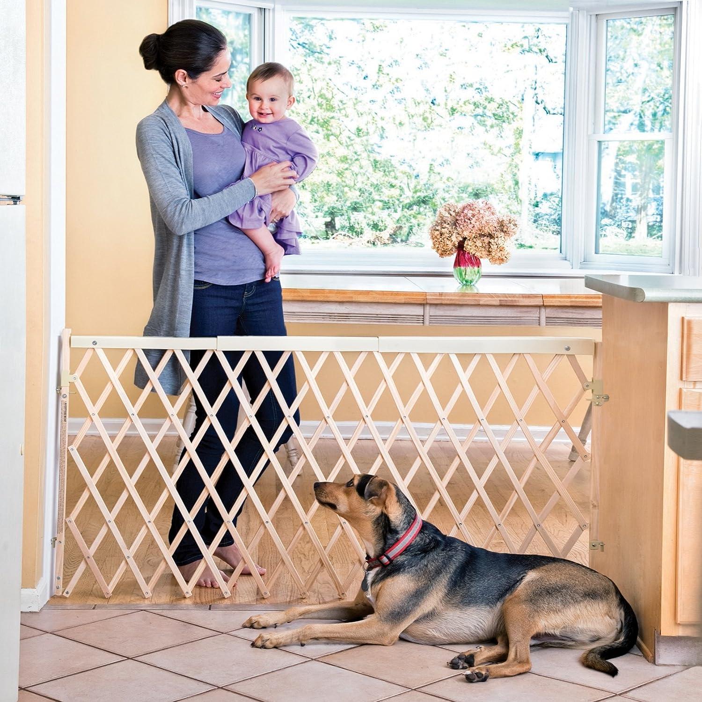 Amazon.com : Evenflo Expansion Walk Thru Room Divider Gate : Indoor Safety  Gates : Baby