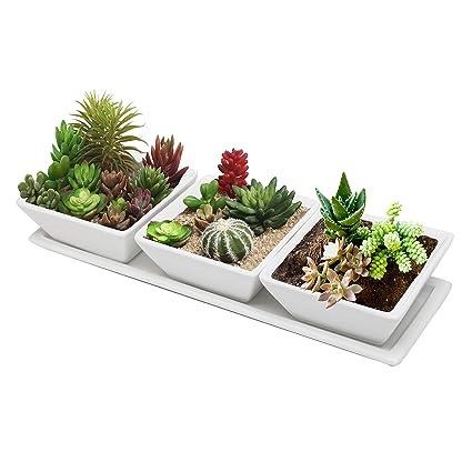 Mygift Set Of 3 Decorative Modern White Square Flower Succulent