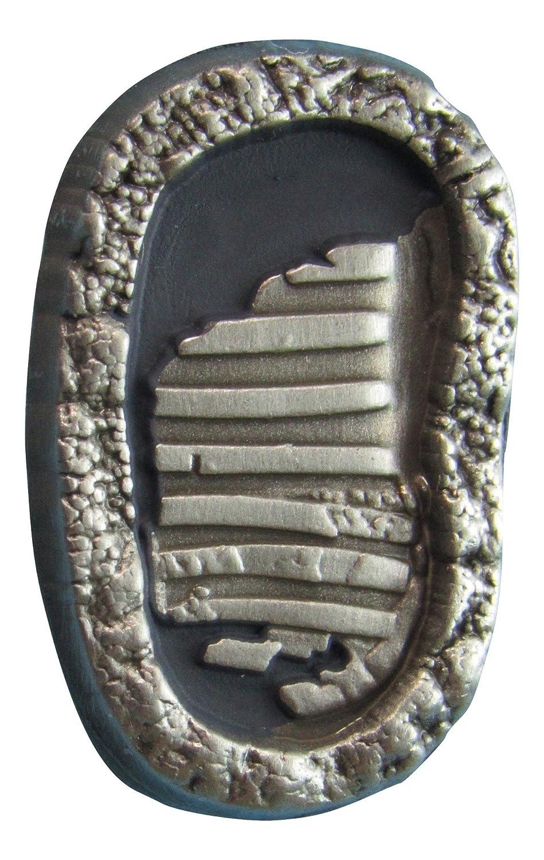 Nasa Apollo 11 Footprints 40th Anniversary Lapel Pin Contains Flown Command  Module Metal That Went to the Moon on Apollo 11