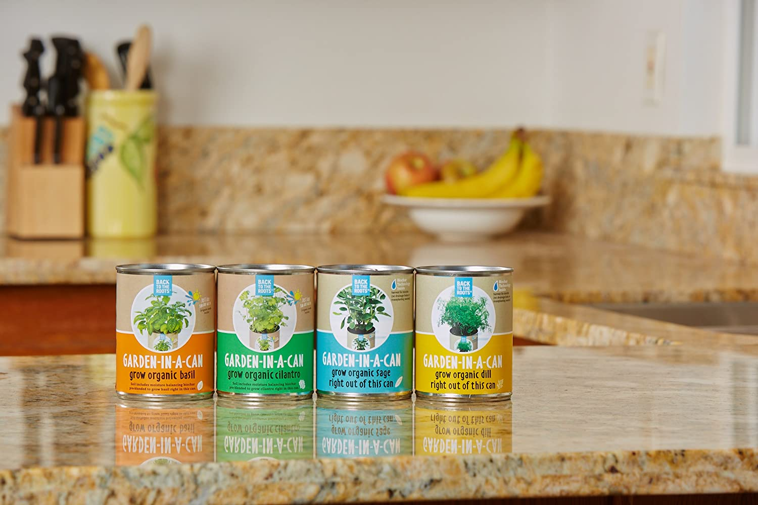 Amazon.com: Back to the Roots Garden-in-a-Can Grow Organic Herbs ...
