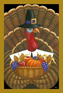 Toland Home Garden Tom Turkey 28 x 40 Inch Decorative Fall Autumn Harvest Thanksgiving Pilgrim Bird House Flag