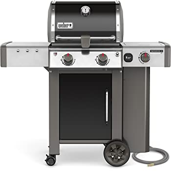 hole grills glory Black