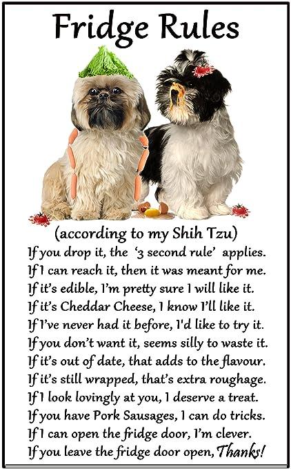 "Shih Tzu Gift - Fridge Rules - Large Fun flexible Fridge Magnet- size 16cms x 10 cms (approx. 6"" x4""): Amazon.co.uk: Kitchen & Home"