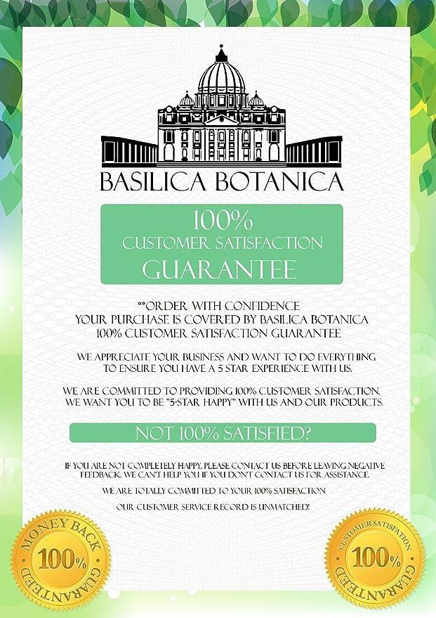 amazon com basilica botanica garden hose nozzle best for car