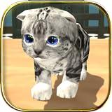 Appliances : Cat Simulator Kitty Craft