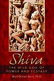 Shiva: The Wild God of Power and Ecstasy (English Edition)