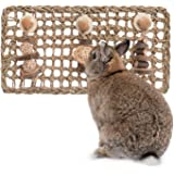 andwe Seagrass Protector Mat with Toys for Rabbit Bunny Chinchilla Guinea Pigs or Other Rodent Pets